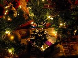 Diensten Verkoop V Kerstbomen 2013 En Goedkope Geschenken Vr